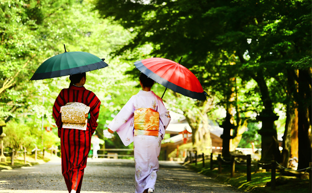 A stroll through Kirishima-Jingu Shrine in kimono attire