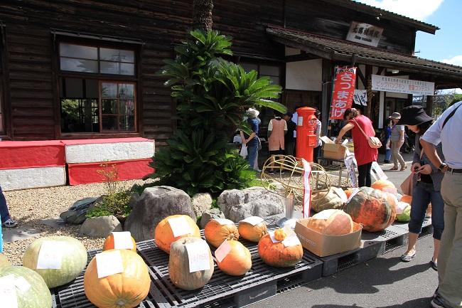 かぼちゃ弁当!
