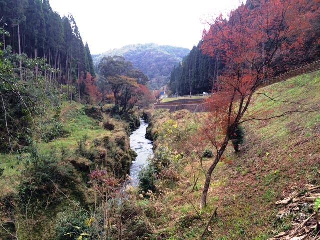 今日の新川渓谷