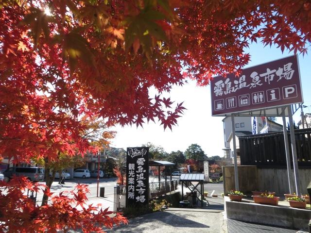 霧島神宮周辺の紅葉
