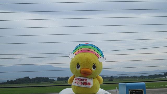 本日は「虹の日」です!