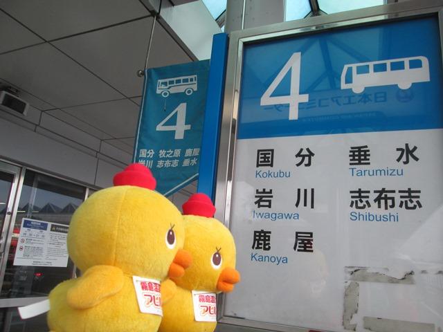 鹿児島空港からのバス乗り場をご紹介!