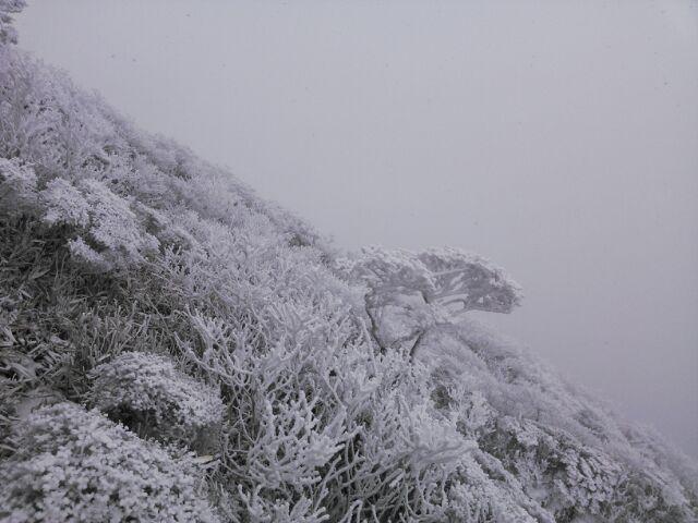 韓国岳雪山登山しなくても~~