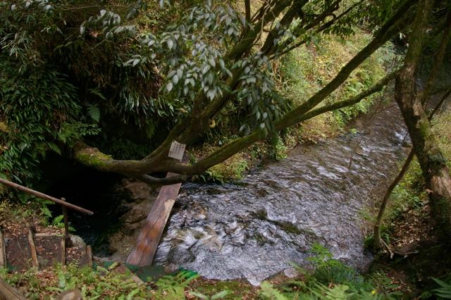 大出水(おおでみず)の湧水
