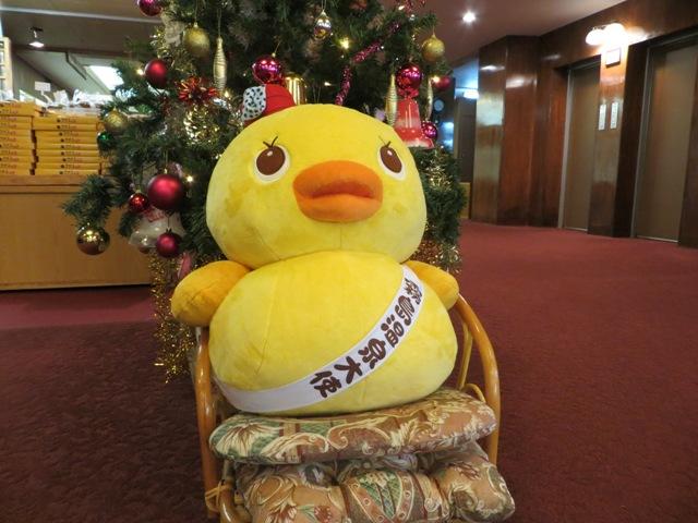 メリークリスマス&横綱昇進おめでとうございます~!