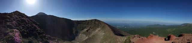 高千穂峰ではミヤマキリシマが見頃です^^