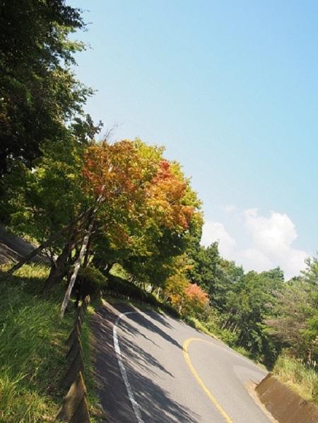 秋といったら!!