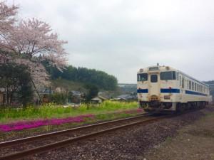 春の大隅横川駅