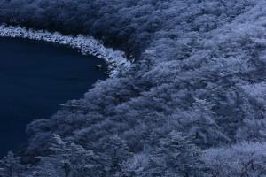 霧島 雪の花