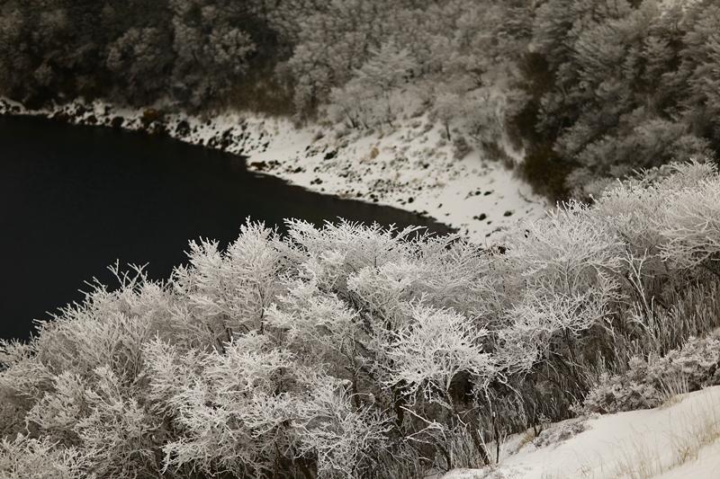 不動池も雪の花
