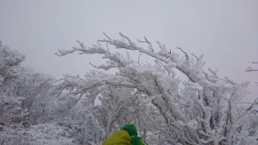 霧島連山トレッキング(韓国岳)