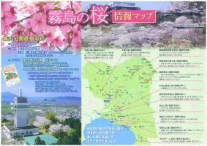 霧島の桜情報マップ