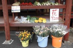 野菜販売しています。 霧島市観光案内所(大鳥居横)