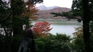 紅葉状況(えびの高原池めぐり自然探勝路)2017.11.3