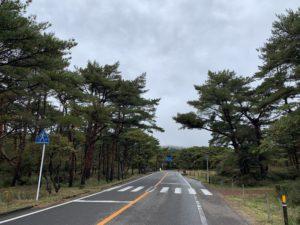 秋の紅葉情報(2019年10月 えびの高原)