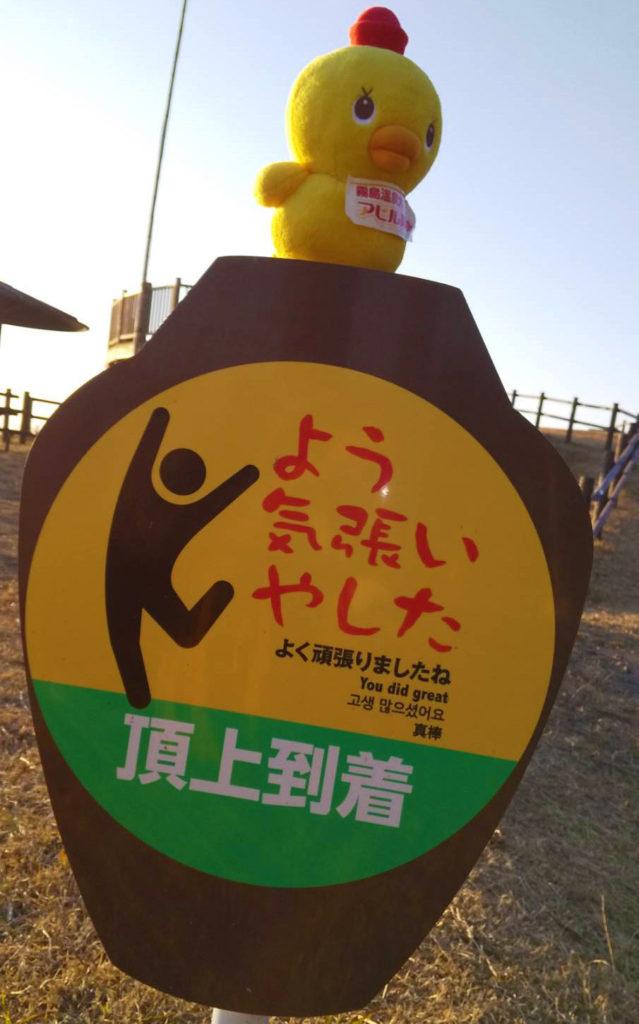 再チャレンジ!ダイヤモンド桜島✨