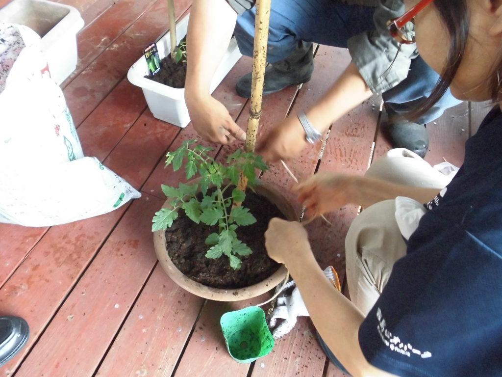 Kirishima Community Garden Project 第一弾イベントにむけて準備中~(^^♪