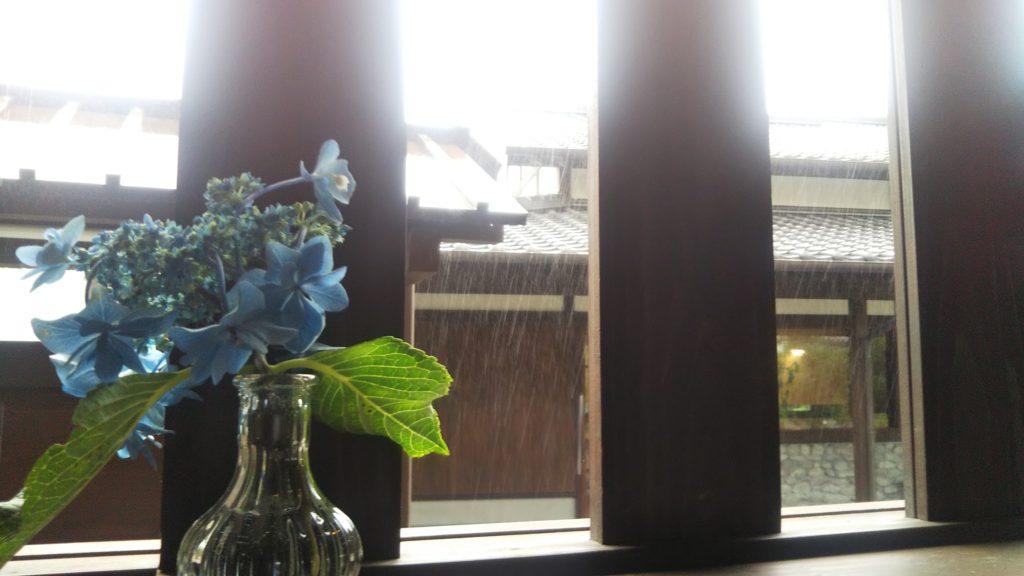 梅雨の日曜日☂
