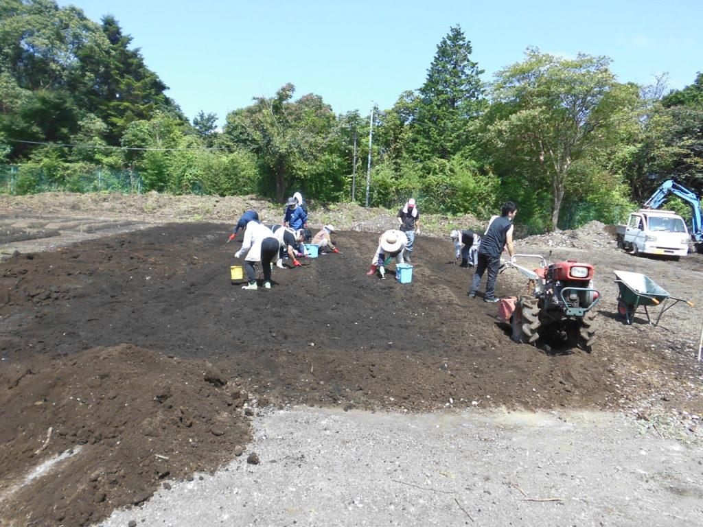 Kirishima Community Garden Project 農園、着々と。
