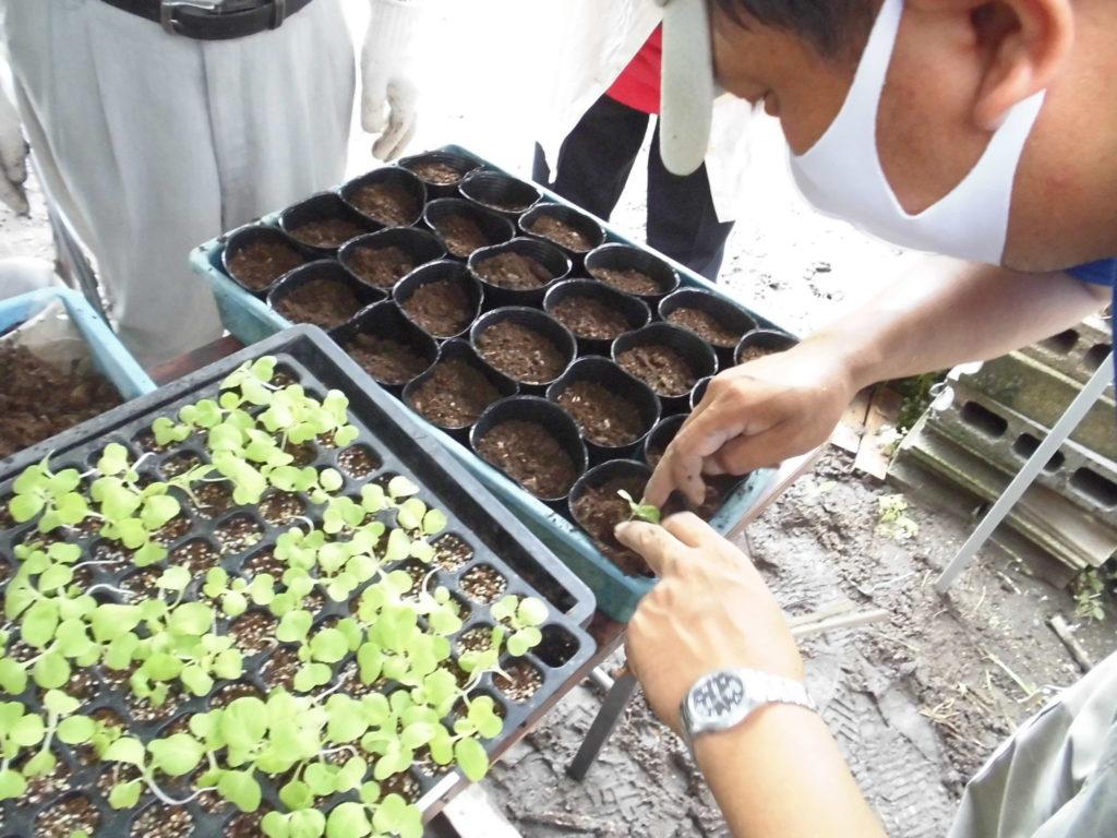 Kirishima Community Garden Project 番外編①開催しました!