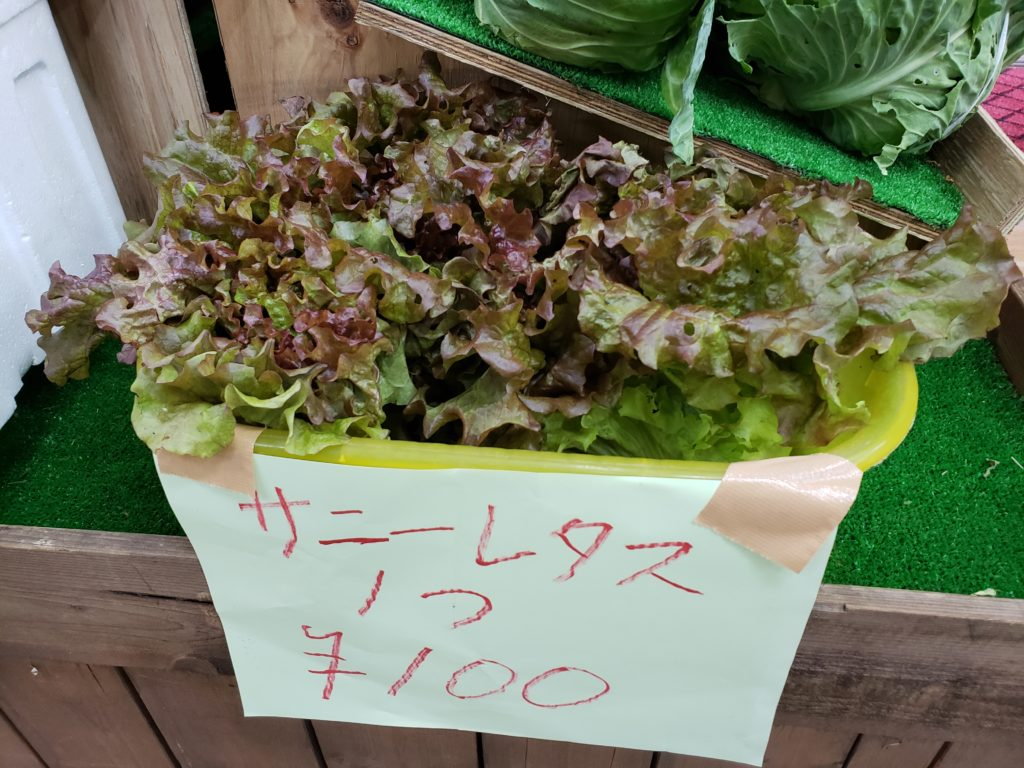 地元産お野菜案内所にて販売中 !!