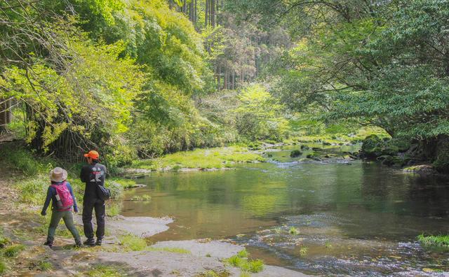 Kyushu Olle: Kirishima Myoken Course