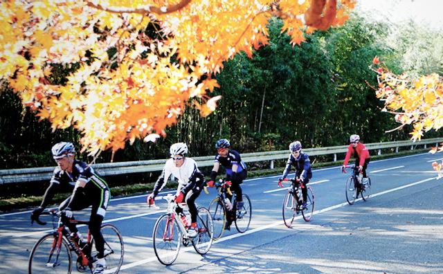 Cycling Paradise Kirishima