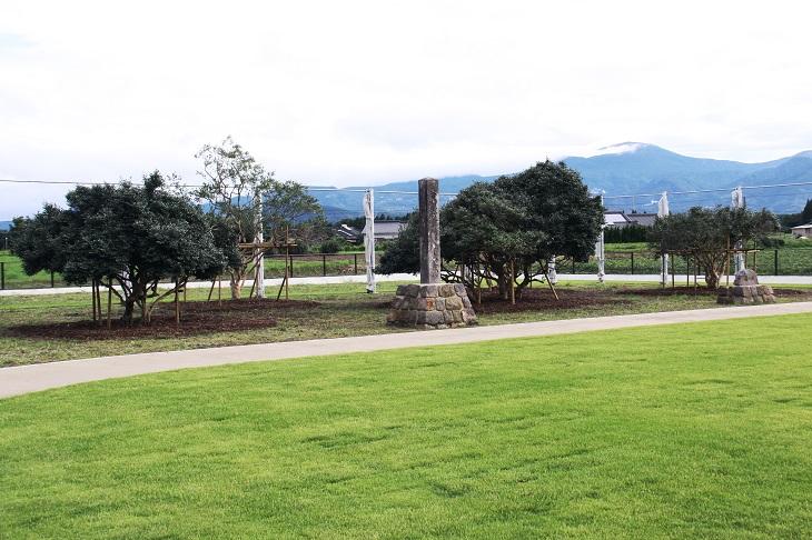 大茶樹記念碑