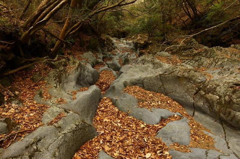 霧島の渓谷