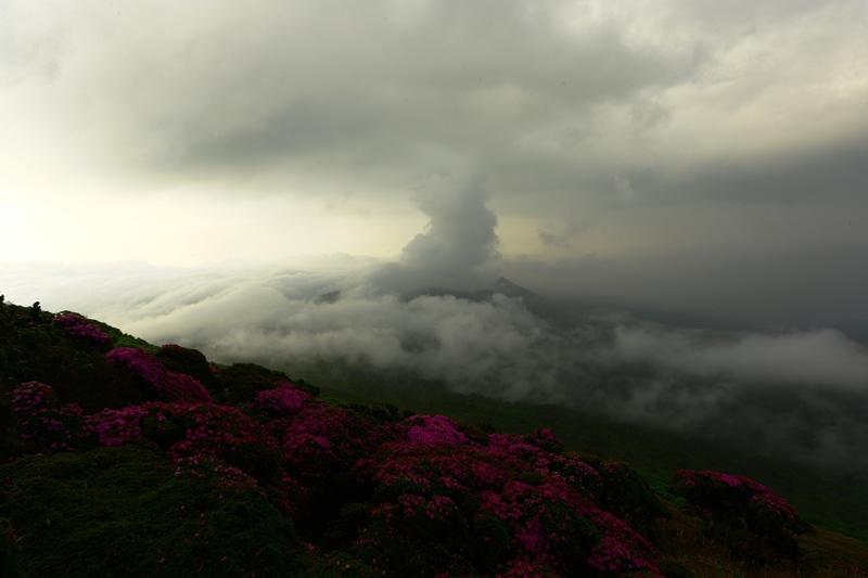 霧島連山朝一番の演出