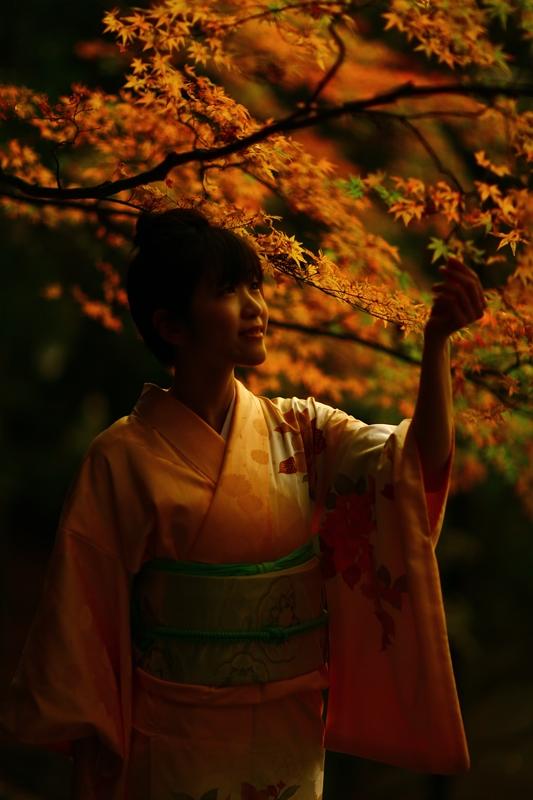 和服で参拝、ぶらり霧島神宮。12月12日のお客様