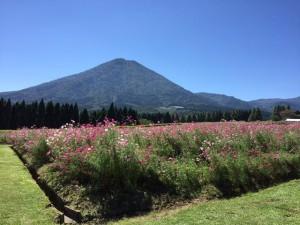 生駒高原に行ってきました~♪