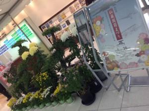 鹿児島空港でも!!
