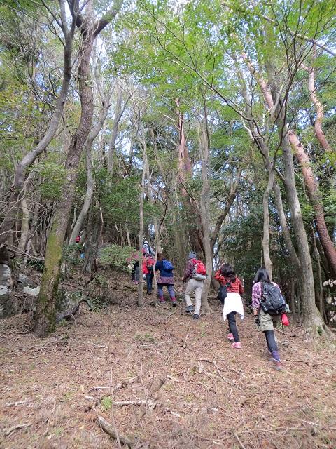 霧島神話の里公園 国立公園霧島指定80周年記念 小烏帽子トレッキング