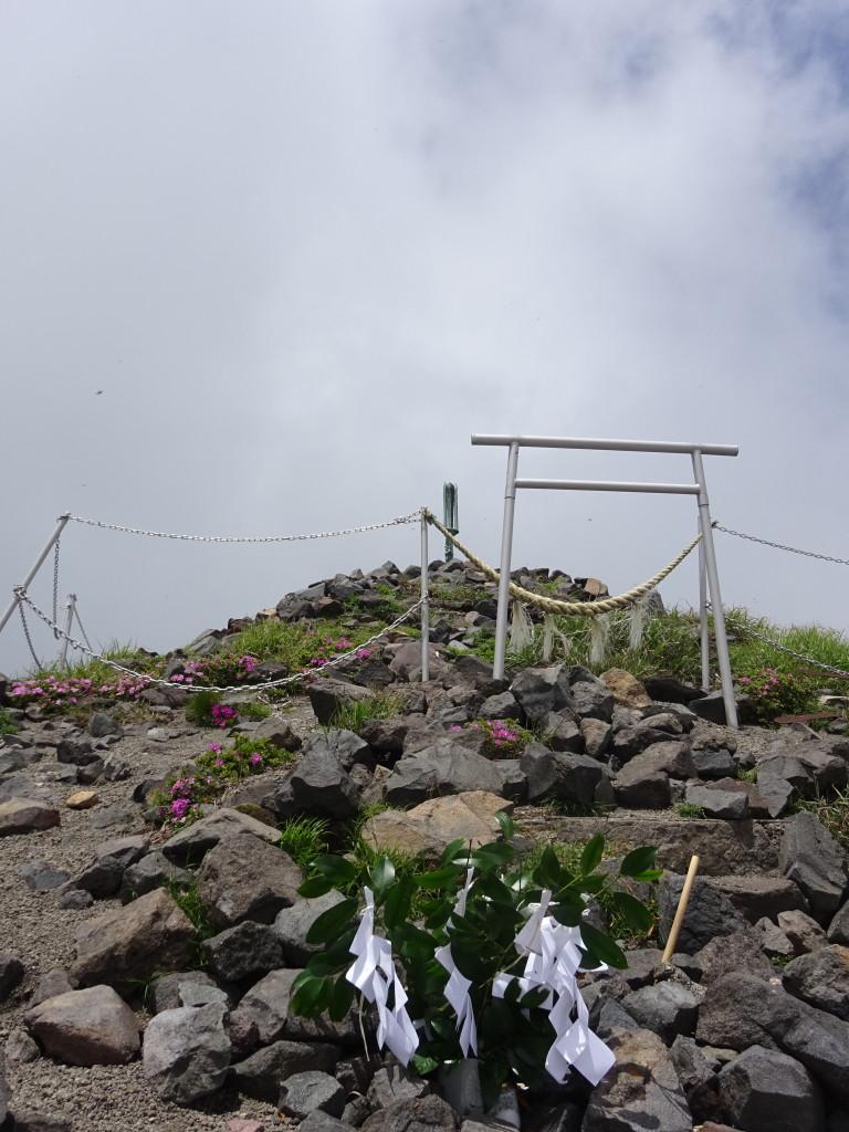 坂本龍馬霧島神宮参拝150年記念高千穂登拝が行われました