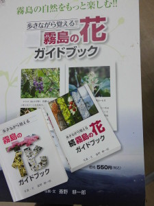 花のガイドブック「初版」再入荷しました