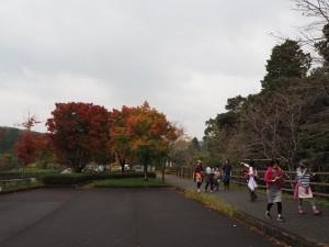 第2回 歩こう!!ジオと神水峡と大パノラマを開催しました。