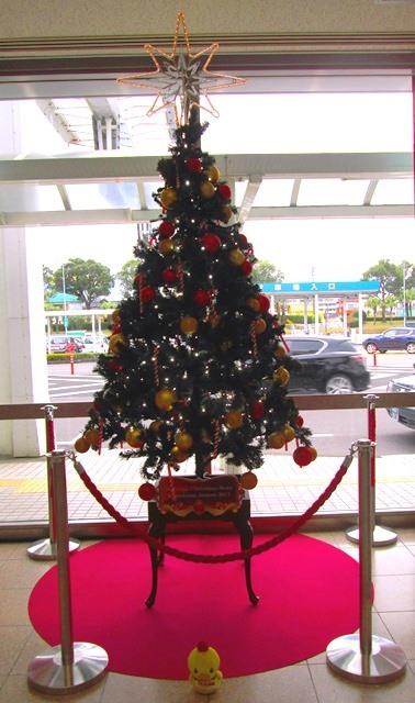 クリスマスツリーの日★