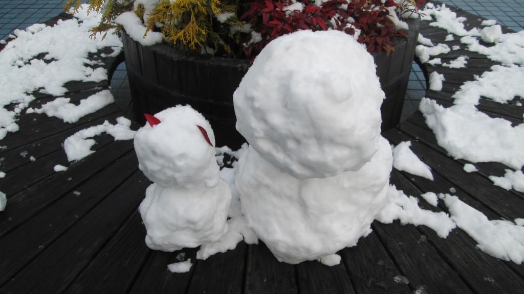 雪が降ってます❆
