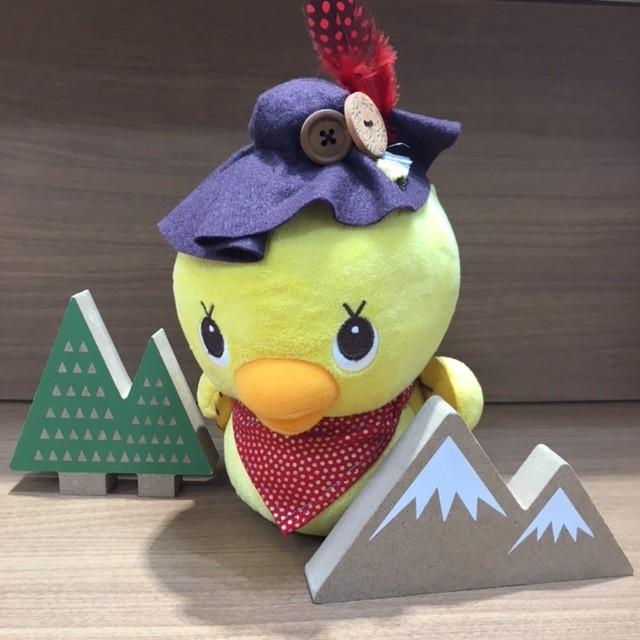 今週末は夏山フェスin福岡!!