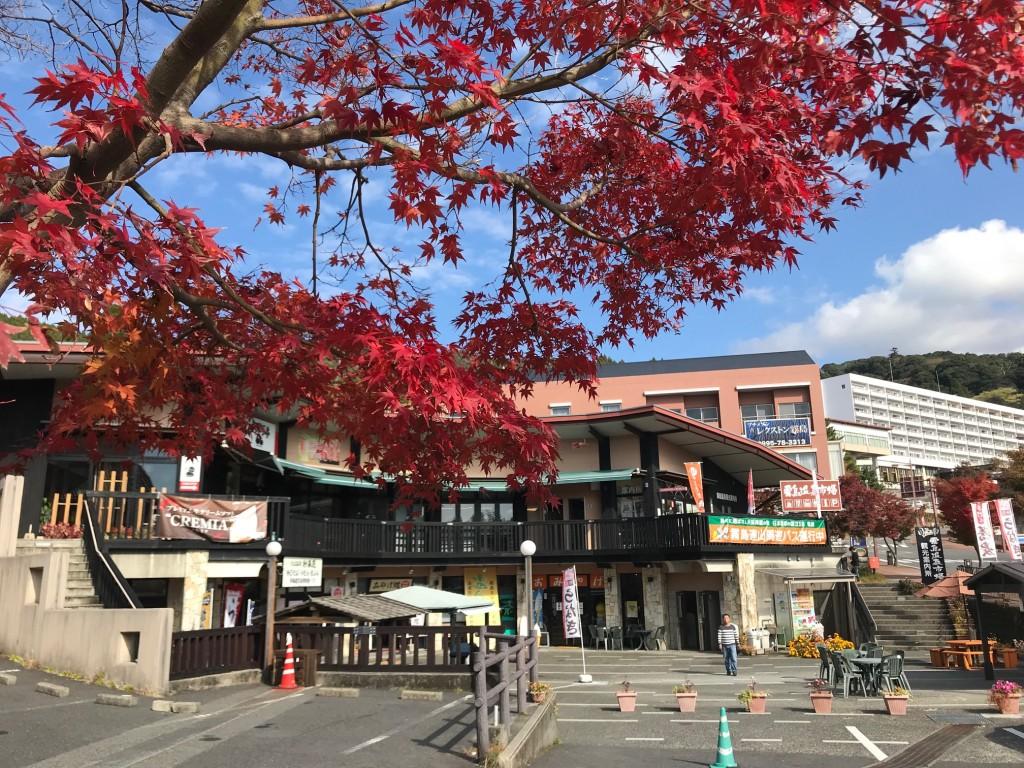霧島温泉郷 丸尾周辺の紅葉が見ごろを迎えています!