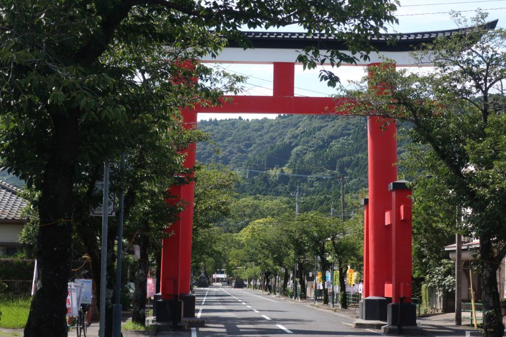本日、鹿児島神宮の六月灯です☆