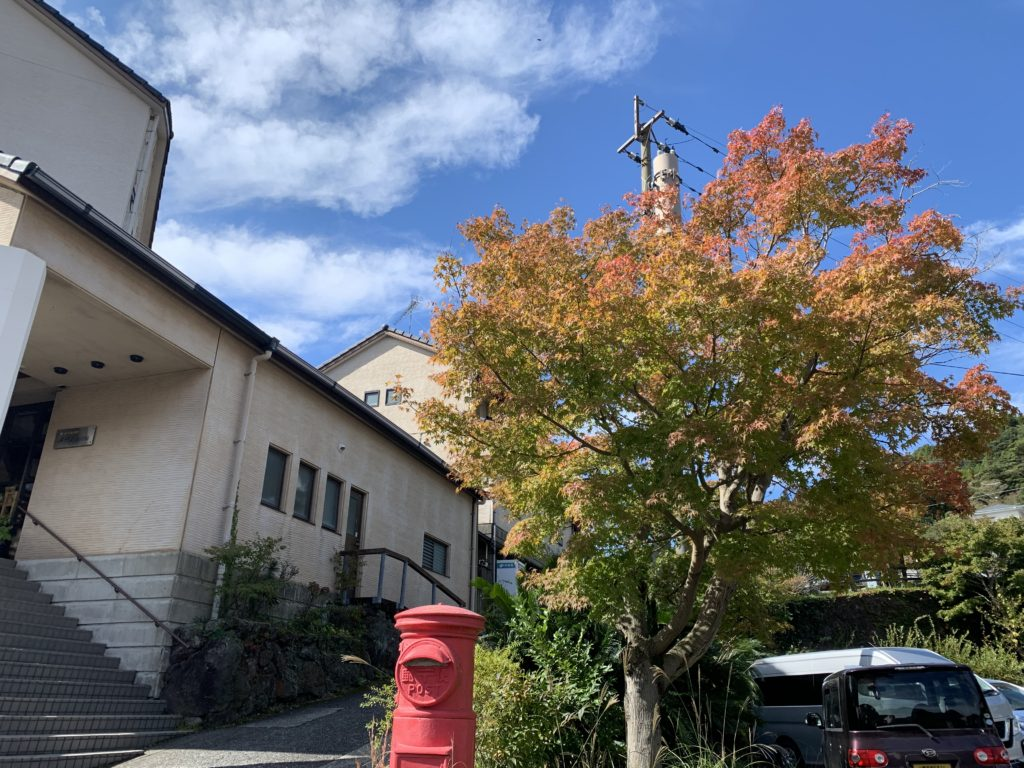秋の紅葉情報(霧島温泉郷)
