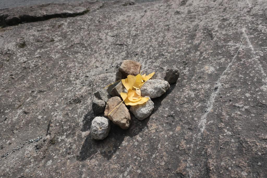 鹿児島神宮の紅葉