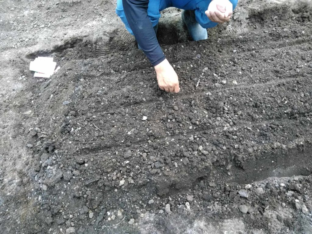 Kirishima Community Garden Project農園仕込み中~