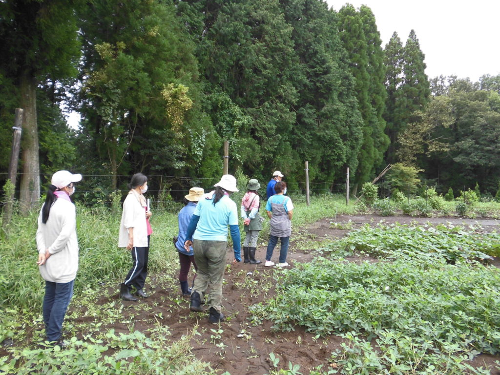 Kirishima Community Garden Project 番外編①開催しました!
